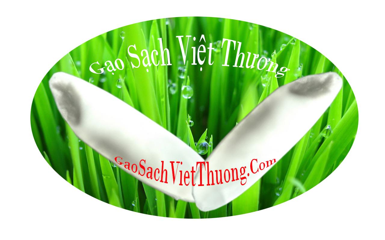 gao-sach-sai-gon