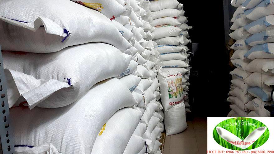 Cần mua gạo làm từ thiện hãy gọi đại lý gạo sạch Việt Thương HCM 01